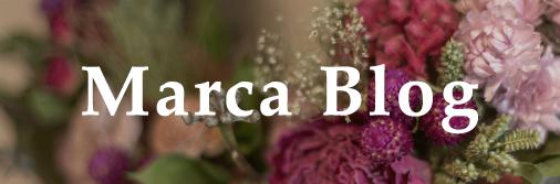 Marca Blog